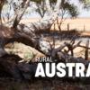 オーストラリアの自然:環境 - UE マーケットプレイス